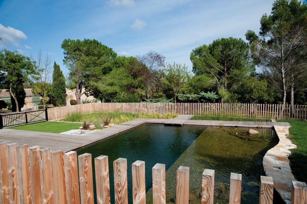 cv architecture - r u00e9alisation piscine biologique
